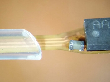 The sensor element (right) is attached to a flexible polyimide based substrate which is encapsulated in biocompatible insulation. (Photo: Department of Micro and Nanosystem Technology / USN)