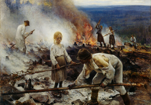 Forest fires tell a 700 year old tale