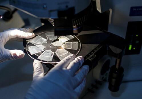 New allergy test promises safer antibiotic use