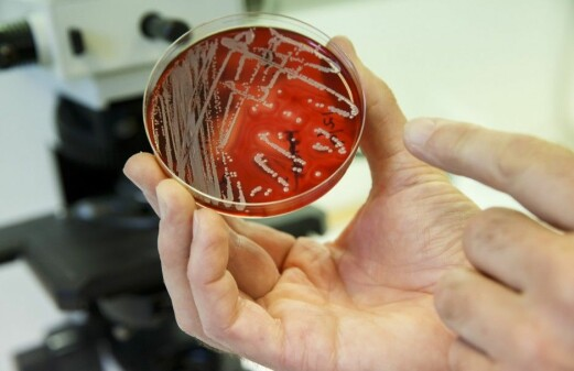 Statistics might save us from resistant bacteria