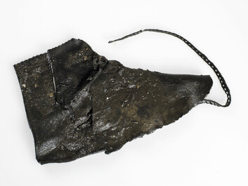 One of the most complete shoes from this time period found at the Ørland site. (Photo: Åge Hojem, NTNU University Museum)