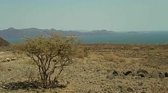 Kjempefunn av grunnvann i Kenya