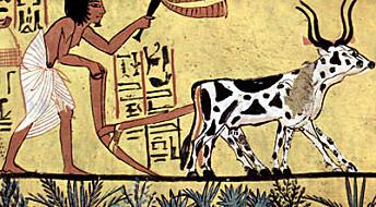 Jordbrukssamfunnet tøft for helsa