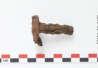 Rusty rivets reveal origin of Icelandic viking ships
