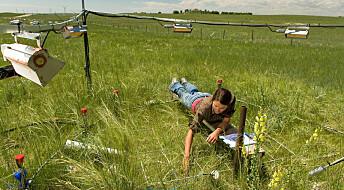 CO2 gir lengre vekstsesong