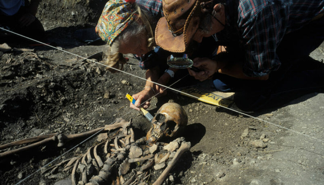 Forskerne Ove og Evy Persson ved Ajvide på Goland i 1983, under avdekking av et skjelett av en kvinne som døde rundt 2700 år før vår tidsregning. Göran Burenhult