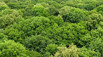 Grønn jord langt tidligere enn antatt