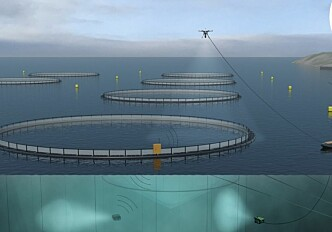 Tomorrow's fish farms will be unmanned