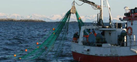 Fishermen want cod
