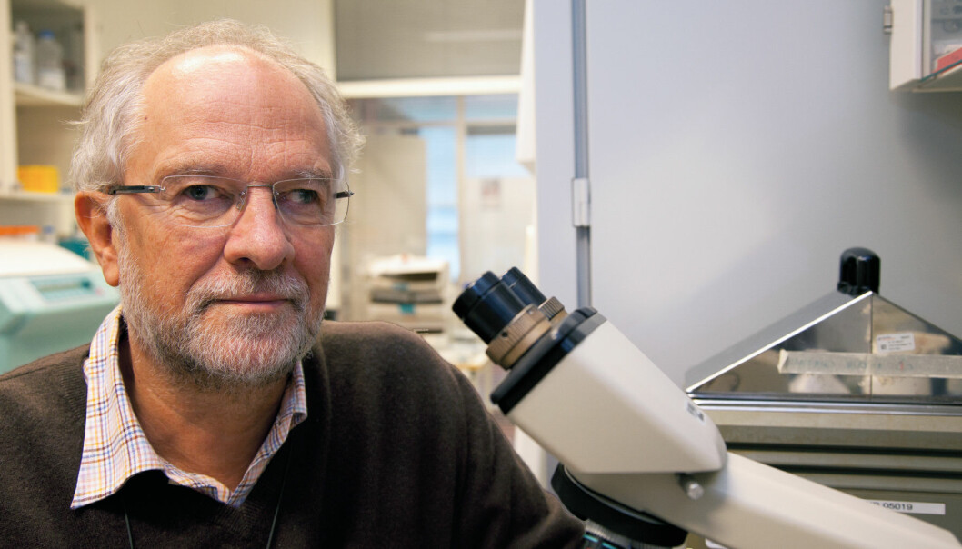 Professor Gustav Gaudernack hopes that his most recent cancer vaccine can be used against all types of cancer. (Photo: Yngve Vogt)