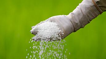 Bakterier kan kutte verdens nitrogenbruk