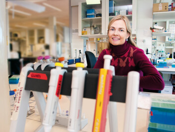 Professor Johanna Olweus has discovered a new method of using the immune system to attack cancer. (Photo: Yngve Vogt)