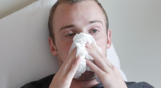 Mange svineinfluensasmittet rundt Oslo