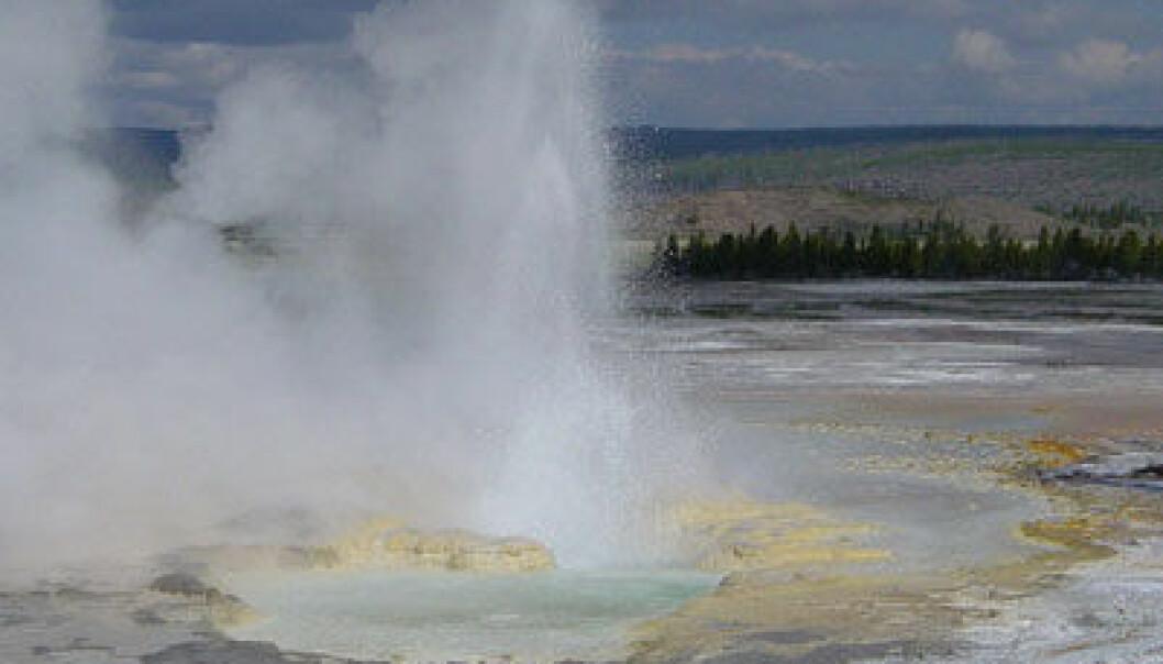 Clepsyda-geysiren i Yellowstone. Daniel Mayer/Wikimedia Commons