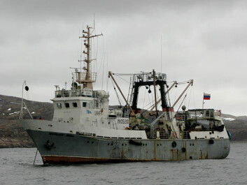 The research vessel that was used during the expedition in 2008, F/F Professor Boyko, is owned by the Institute of Marine Research in Murmansk (PINRO). (Photo: E. Sentyabov, PINRO)