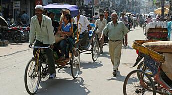 Indias genetiske miks