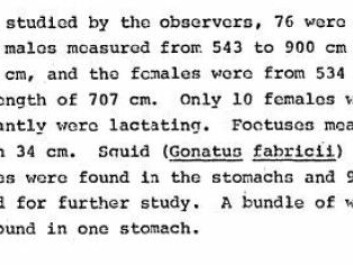 The plastic is mentioned in a single sentence, seen here at the end of the paragraph, in a recently discovered report from 1971. (Photo: Screenshot)