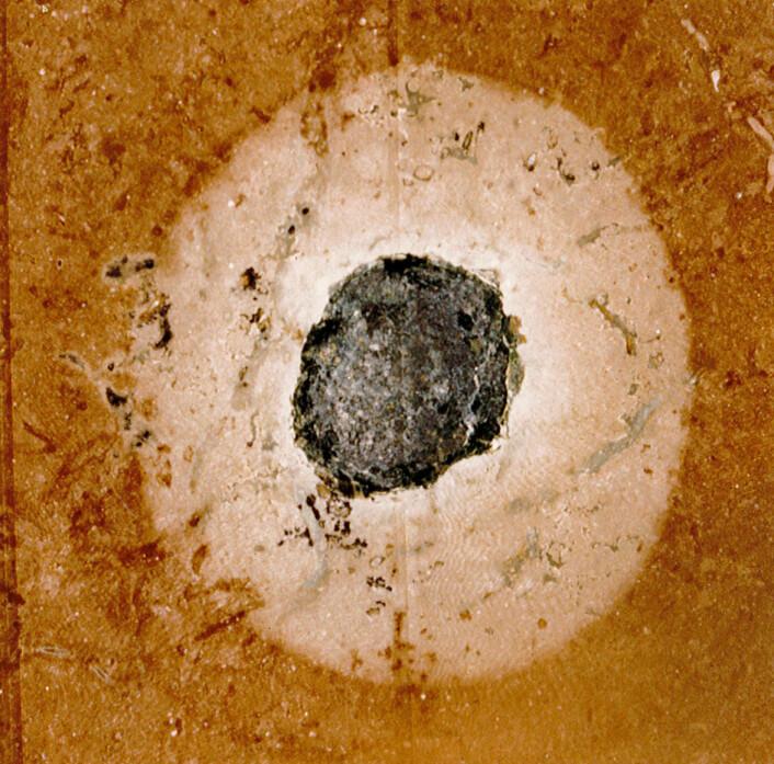 En asteroiderest bevart i et stykke rød sandstein funnet i et steinbrudd i Kinnekulle i Sør-Sverige.  (Foto: Maurits Lindström)