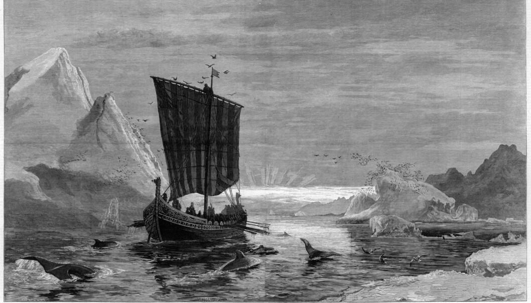 Hvorfor dro folk hele den lange veien over Atlanterhavet for å flytte til det marginale området som Grønland i middelalderen? Var det mulighetene for å tjene penger på de ettertraktede hvalrosstennene som drev dem?  (Illustrasjon: Mary Evans Picture)