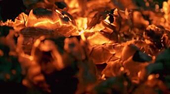 Øyeblikket: Flamme - slik blir veden til lys og varme