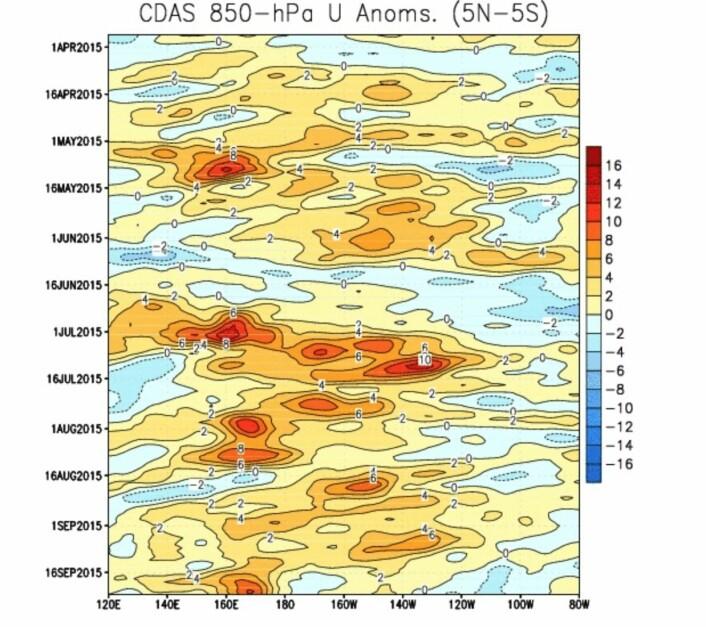 Det har vært et bittelite vestavindsutbrudd (oransje/rødt) ved 170 grader øst de siste dagene. (Bilde: NOAA)