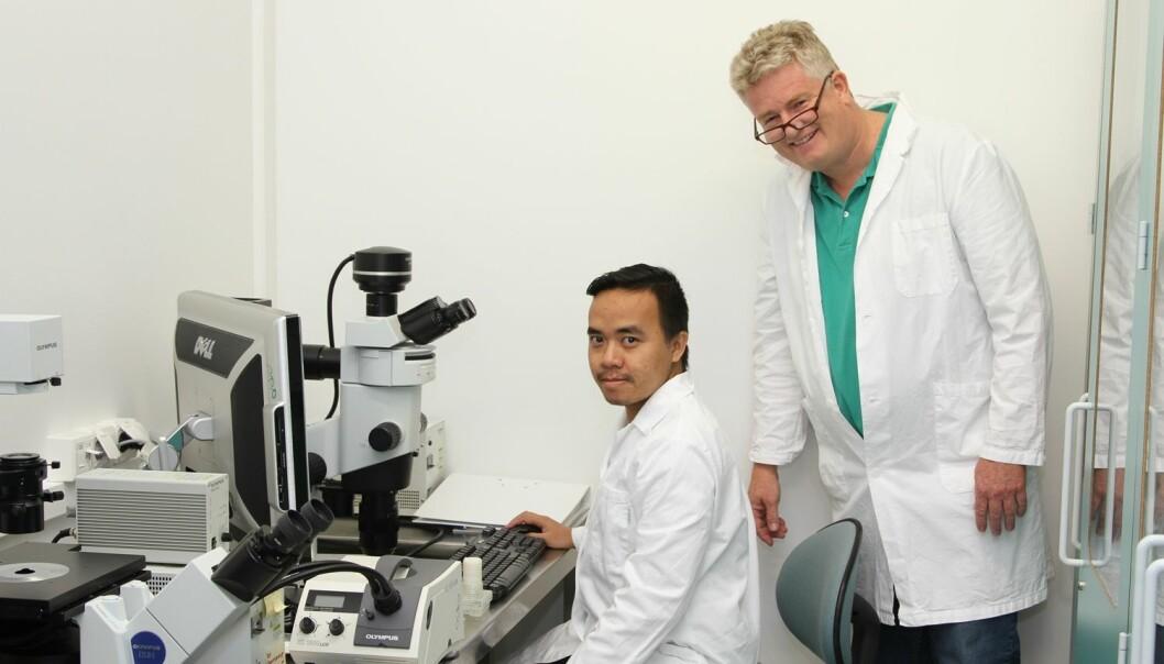 Nanonålene som Nhut Tran har utviklet, inngår i en automatisert prøvetakningsenhet, som langt på vei minner om en enkel lysbryter. Du trykker på en knapp og nanonålene sikrer for at det blir tatt en smertefri prøve i fingertuppen. Til høyre professor og veileder Frank Karlsen.  (Foto: HBV)