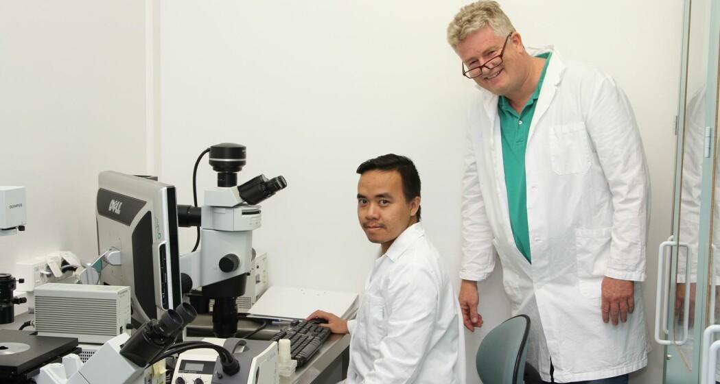 Ny type nanonåler kan avdekke kreft og hjerteinfarkt