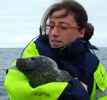 Virginie Ramasco har skrevet doktorgradsavhandling om beitemønsteret til steinkobben i Porsangerfjorden. (Foto: Michael Poltermann, Havforskningsinstituttet)