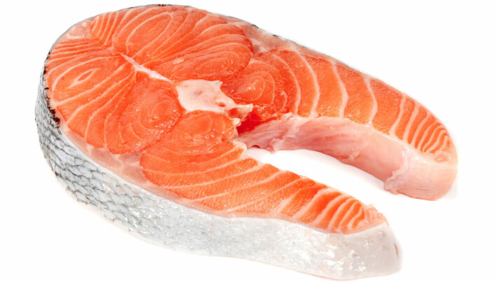 Farmed salmon retains good fats