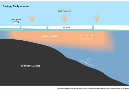 Declining sea ice is making the Arctic ocean warmer