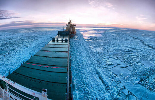 Trans-Arctic shipping and the tragedy of the polar ice cap