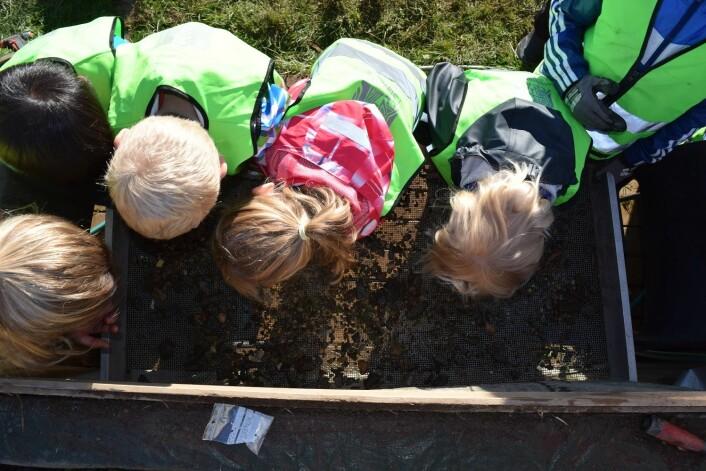 Det var ikke mye flint igjen i såldet etter denne grundige hjelpen av elever fra Kvitsøy Skole.