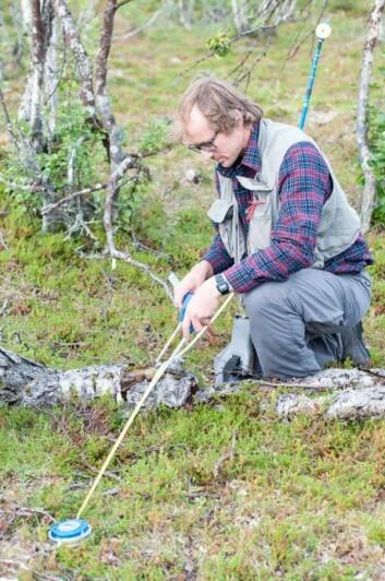 Landsskogtakseringen skal også registrere liggende og stående døde trær på skogflatene. Erik Sørensen registrerer lengden og diameteren på en såkalt læger, det vil si et liggende dødt tre. (Foto: Lars Sandved Dalen, Nibio)