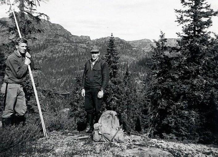 Fra 1960 til 1980 besto Landsskogtakseringens takstlag av som regel tre personer. Her ser vi assistentene Magne Harald Viken og Arvid Viken et sted i Buskerud i 1965. (Foto: Ole Viken)