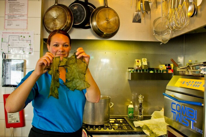 – Det er slike tareflak gourmetkokkane vil ha, fortel Gunhill Sæle-Bjørkhaug på Havsalaten kafe. (Foto: Marit Bendz)