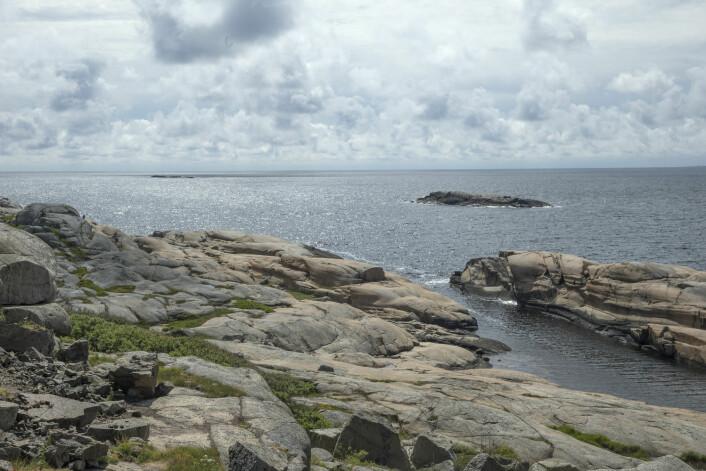 Nasjonalparker og verneområder som Færder nasjonalpark kan være viktige fristeder for å øke marine bestander. (Foto: Terje Bendiksby, NTB scanpix)