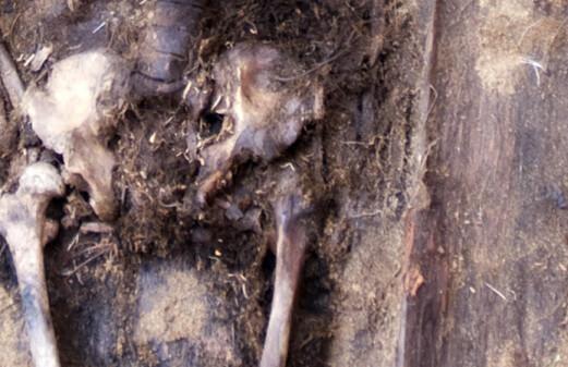 Secrets in the cemetery