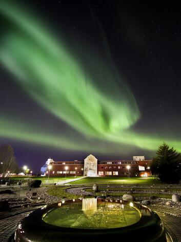 Vinteren er snart i anmarsj, og dermed er det tid for en ny turistsesong i Tromsø.  (Foto: Stig Brøndbo)