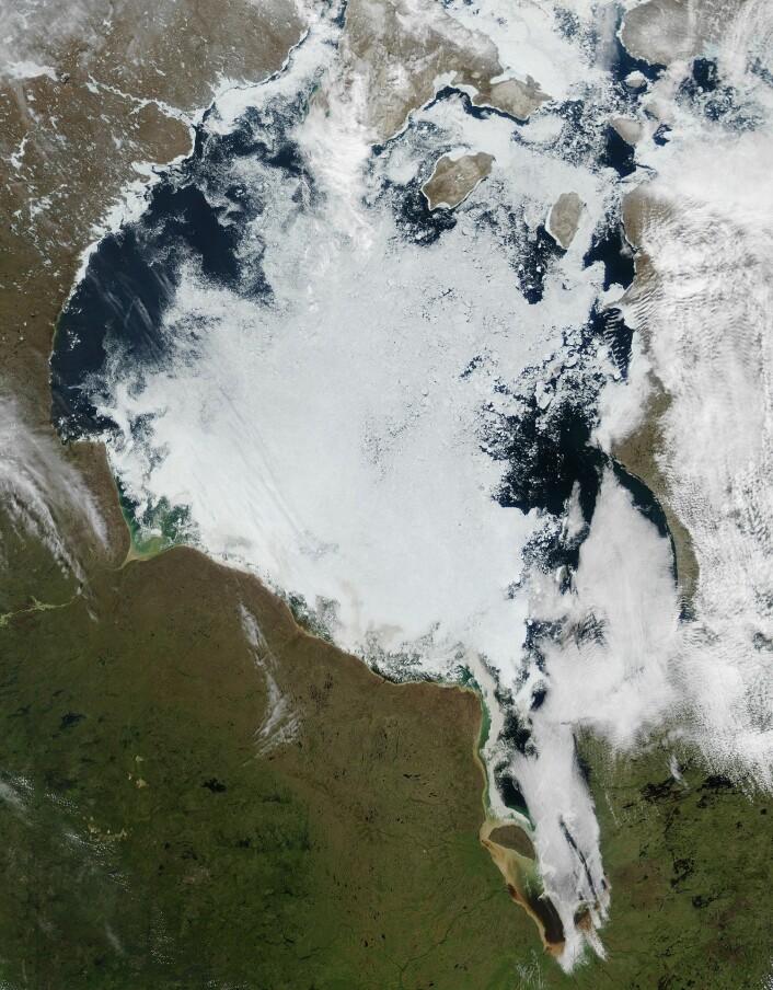 Hudson Bay under issmeltingen. Bildet er tatt i midten av juni. NASA-forskere har sett at isen smelter tidligere enn før. (Foto: NASA)
