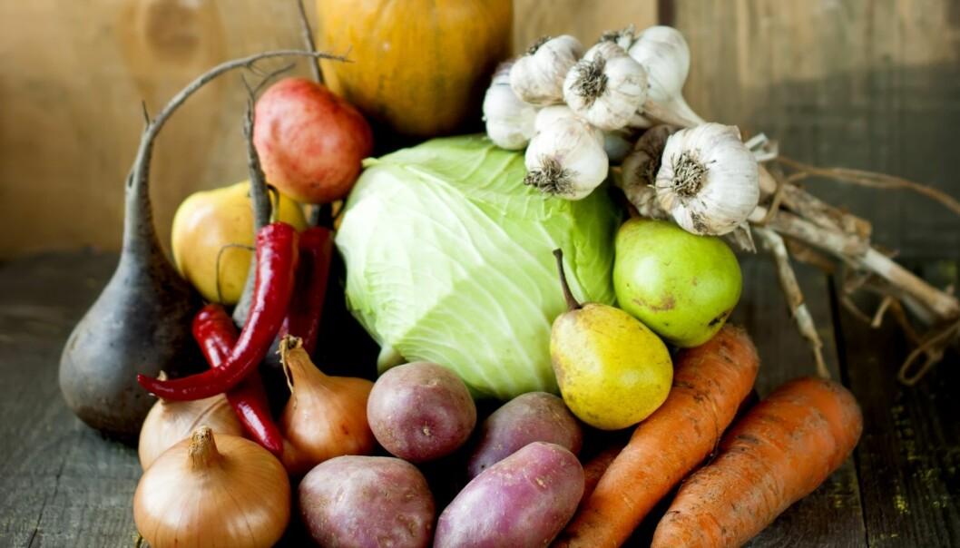 Representanter for Folkehelseinstituttet (FHI) hevder at økologisk mat kan gi mindre sjanse for misdannelse i urinrøret hos guttebarn, men Arne Grønlund mener det ikke er påviste helseeffekter av økologisk mat. (Illustrasjonsfoto: Microstock)