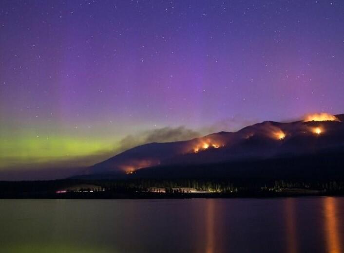 Skogbranner og nordlys i vakkert/dramatisk samspill i Montana. (Foto: Philip Granrud)