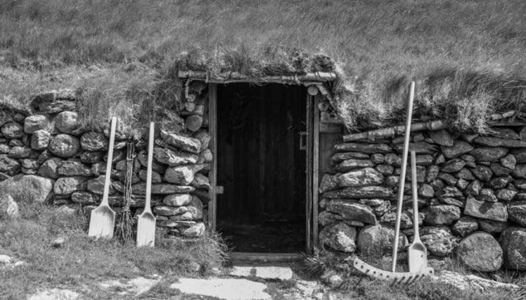 Inngangspartiet i det rekonstruerte jernalderhuset på Ullandhaug i Stavanger.  (Foto: Marianne Hem Eriksen)