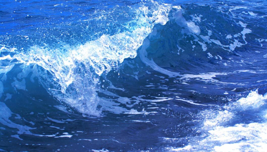 Havvann er om lag fire ganger saltere enn vannet inni kroppen. Drikker du saltvann, så vil denne sterke saltblandingen trekke vann ut av cellene. De tørker ut. Denne prosessen kan kjøres i revers i anlegg som trekker ferskvann ut av saltvann. (Illustrasjonsfoto: Colourbox)