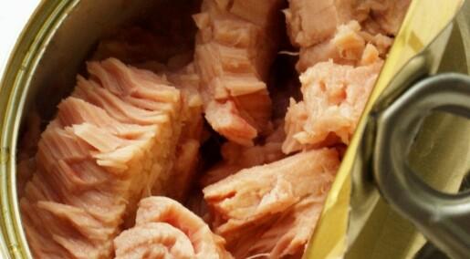 Vil merke tunfisk med gravid-advarsel