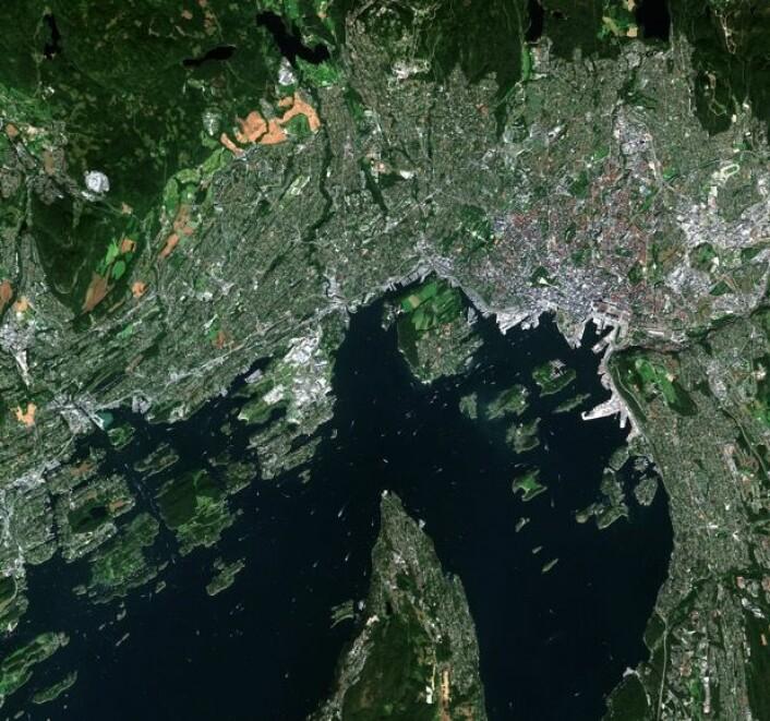 Oslo sett fra satellitten Sentinel-2A. (Bilde: Copernicus Sentinel data 2015)