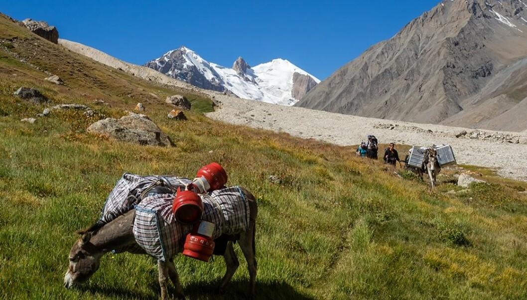 Elvene fra Tien Shan-massivet forsyner vann til folk, dyr og natur på de store sletteområdene i Usbekistan, Kasakhstan, Kirgisistan og Xinjiang-provinsen i Kina. (Foto: Thorben Dunse)