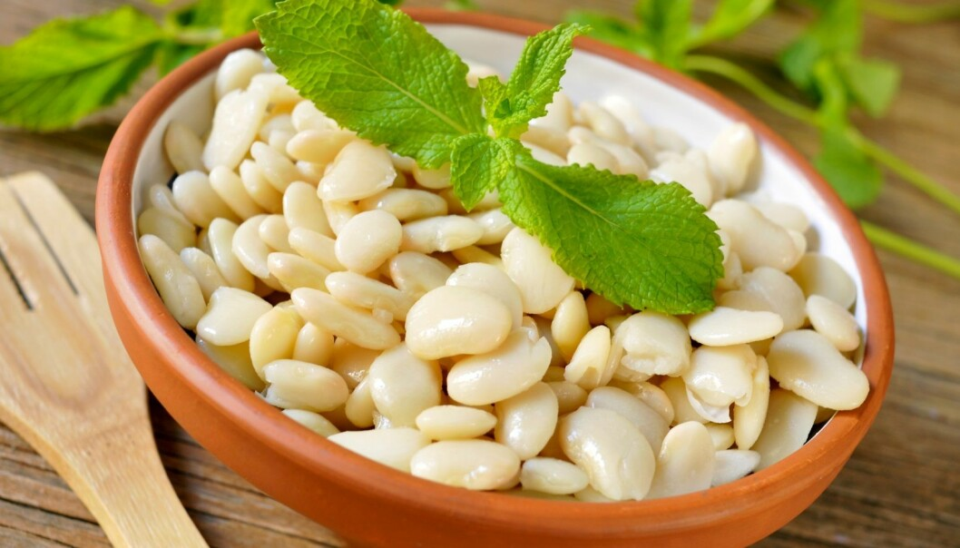Fiser vegetarianere generelt mer når de spiser belgvekster for å dekke proteinbehovet sitt? (Illustrasjonsfoto: Microstock)