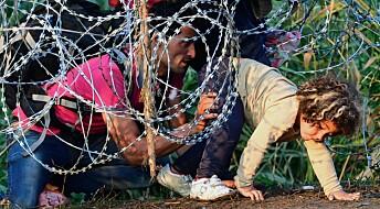 Dette er verdens flyktninger og migranter