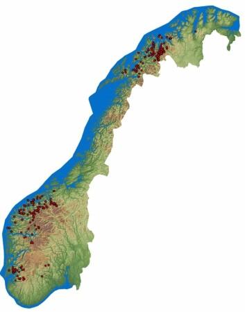 Kartet viser de kartlagte ustabile fjellpartiene i Norge.  (Foto: (Illustrasjon: NGU))