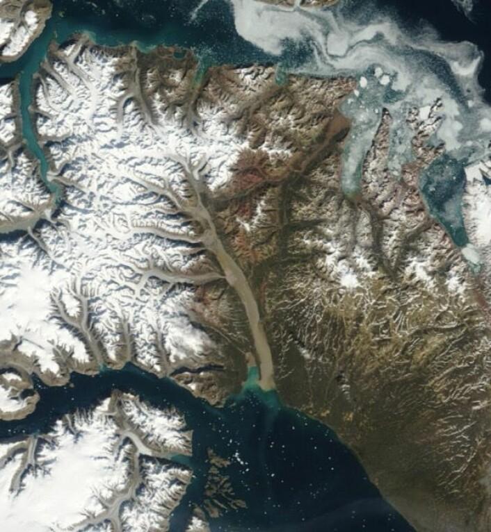 Det er sommer på Grønland. Slik så det ut ved Scoresby Sund 20. august, sett fra NASA-satellitten Terra. (Bilde: NASA Terra MODIS)